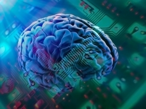 Towards A Better BrainModel