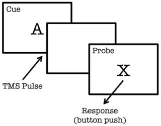 fMRI Methods