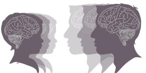 Genetic Tricks To Reverse SchizophrenicSymptoms