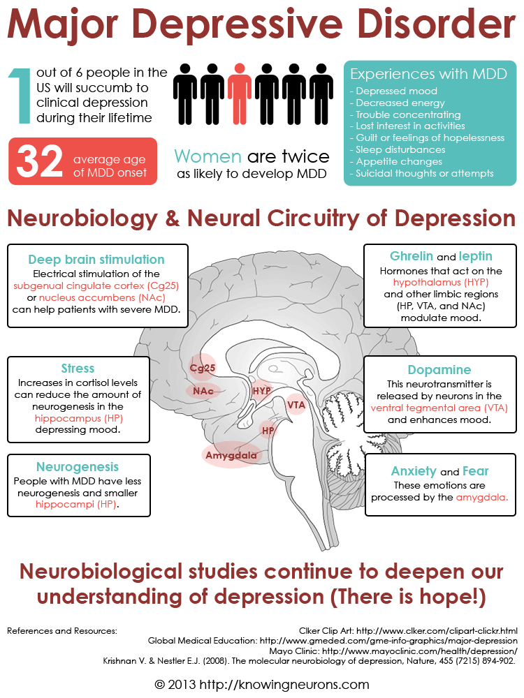 Depression Infographic Knowing Neurons
