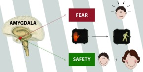 The Sum of All Fears… IncludesSafety?