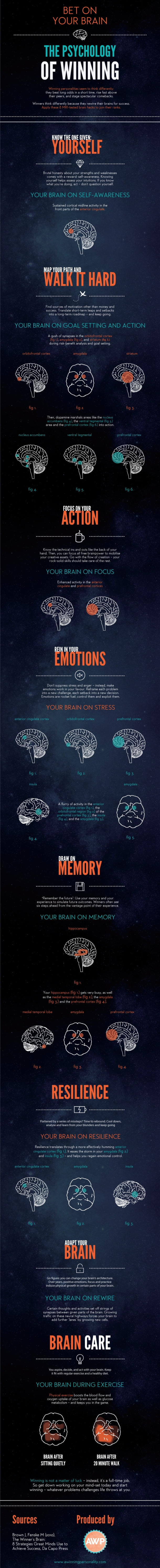 Bet-on-your-Brain-The-Psychology-of-Winning