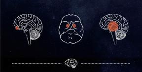 Bet on your Brain: The Psychology ofWinning