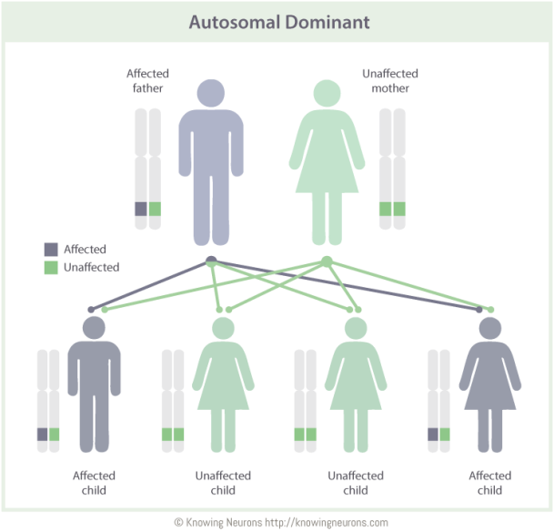 Autosomal Dominant Knowing Neurons
