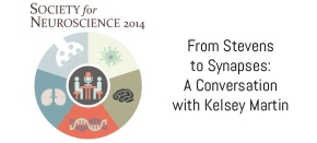 From Stevens to Synapses: A Conversation with KelseyMartin