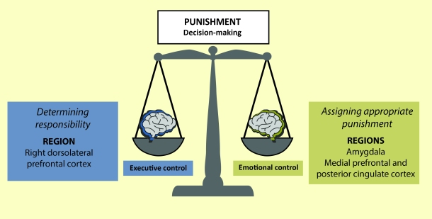 PunishmentDecisionMaking