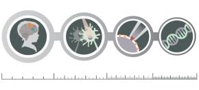 Getting Technical: Methods inNeuroscience