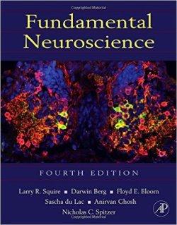 Fundamental Neuroscience