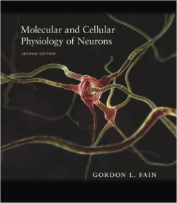Molecular and Cellular Physiology of Neurons