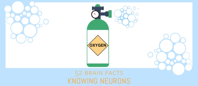 Oxygen_Cover_Knowing-Neurons