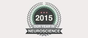Our Year inNeuroscience